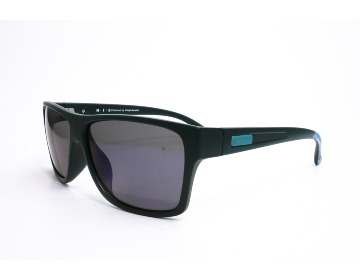 HIS Polarized HP58100-3